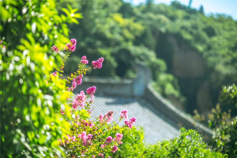 华清宫 风景